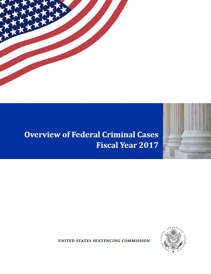 FY 2017 Overview of Federal Criminal Cases