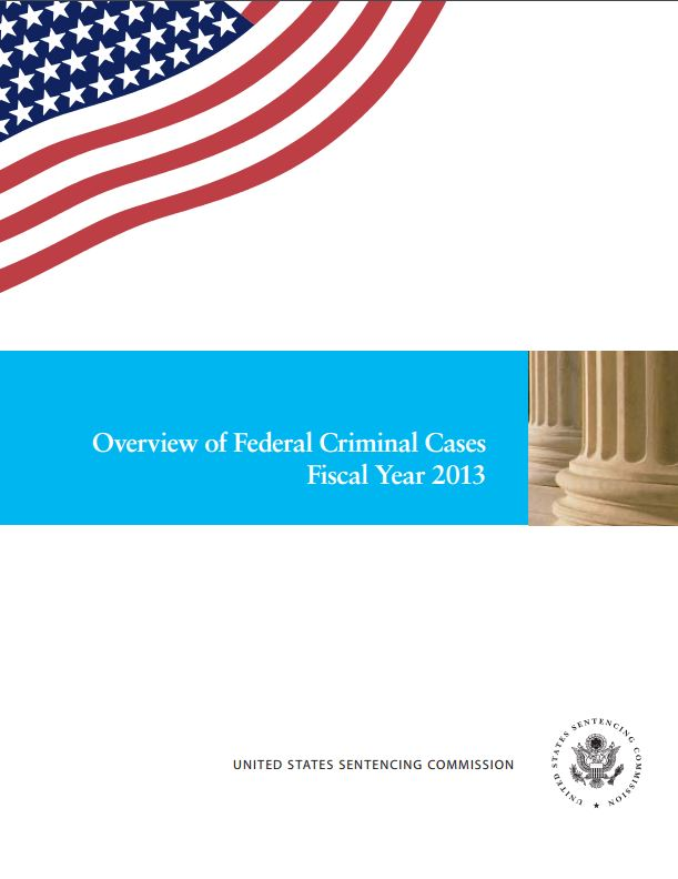 FY 2013 Overview of Federal Criminal Cases